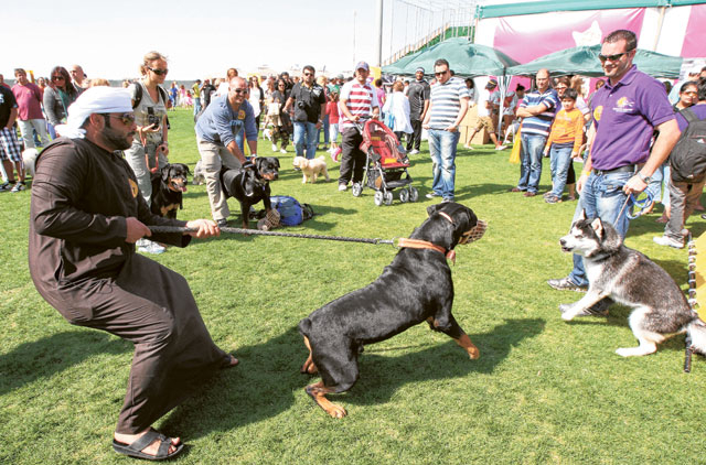 It could have been a child, say pet show volunteers