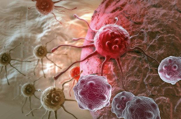 Genetics of cancer tumours reveal possible treatment revolution