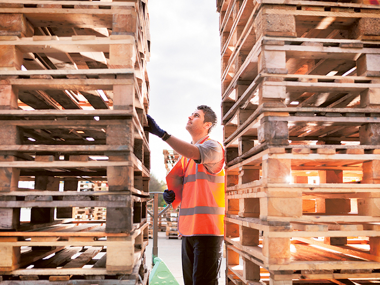 Ecommerce gets UAE's logistics to do the heavy lifting