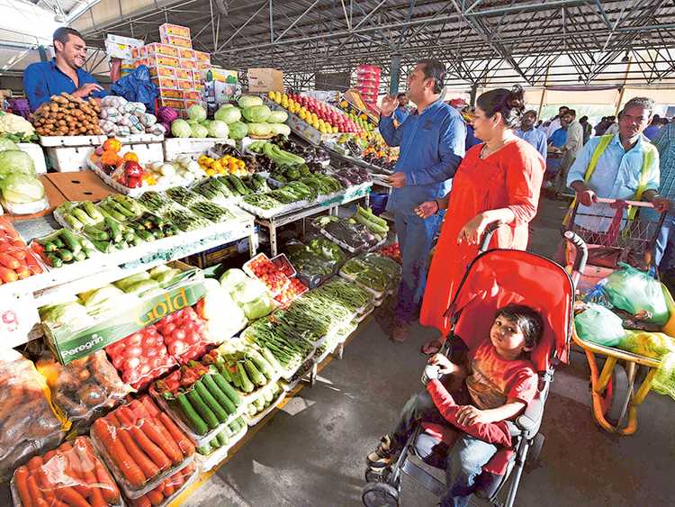 Food safety critical in the UAE   Environment – Gulf News