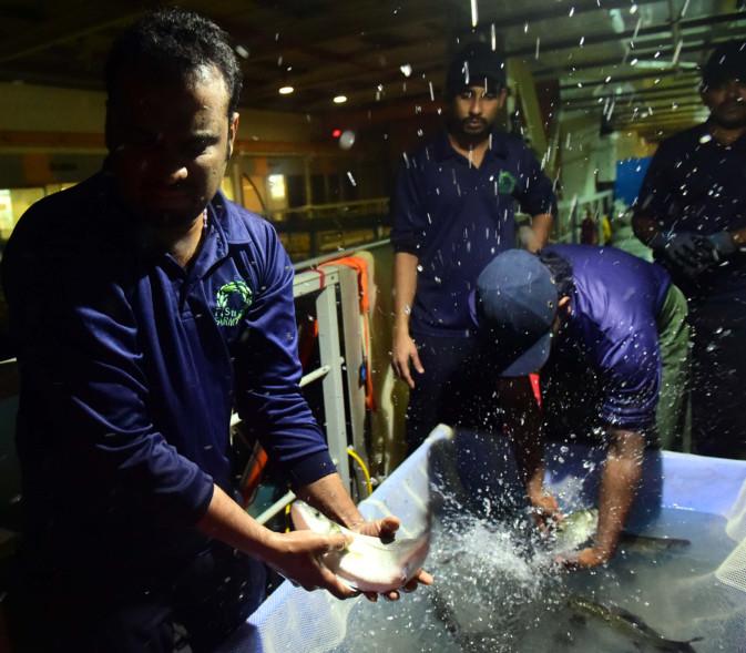 Farm in Jebel Ali breeds European species for UAE fish