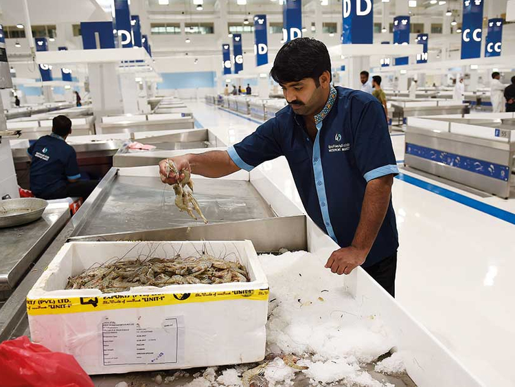 New fish market opens in Dubai | Society – Gulf News