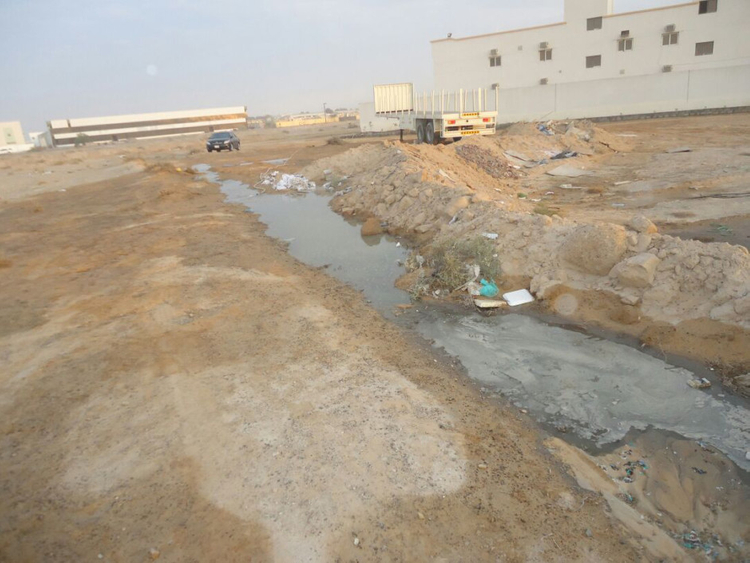 Seven firms fined Dh100,000 each for dumping sewage in
