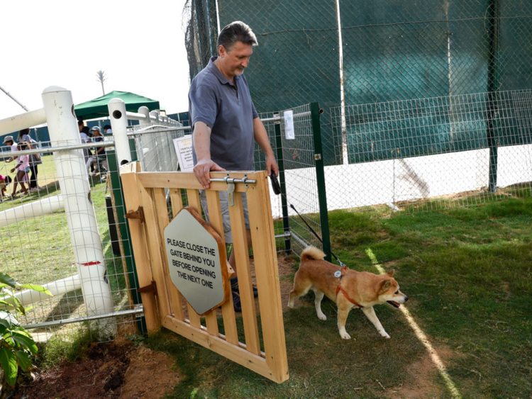 New dog park opens in Sustainable City | Lifestyle – Gulf News
