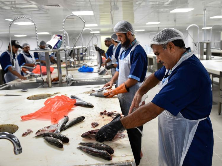 Poor service at new fish market raises a stink