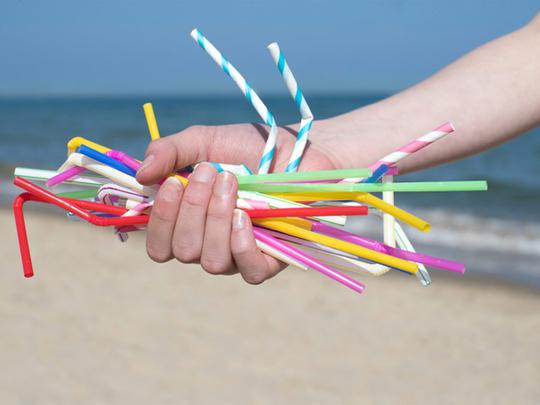 181103_ek plastic straw