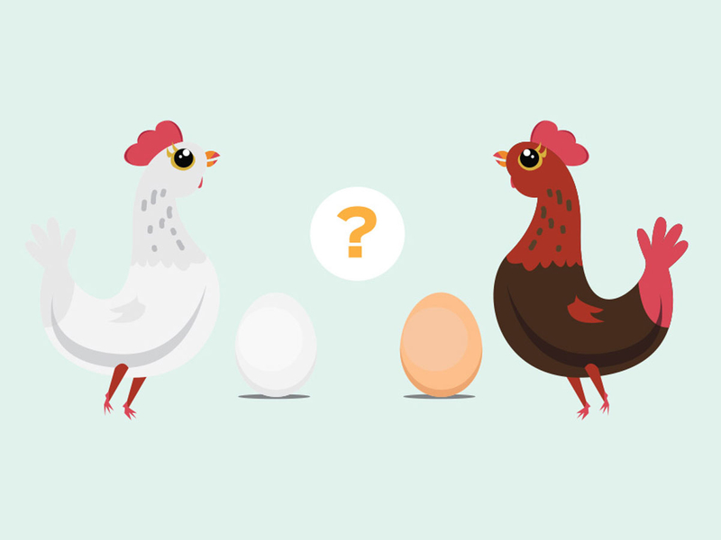 GET CRACKING 7 WAYS TO BUY THE BEST EGGS