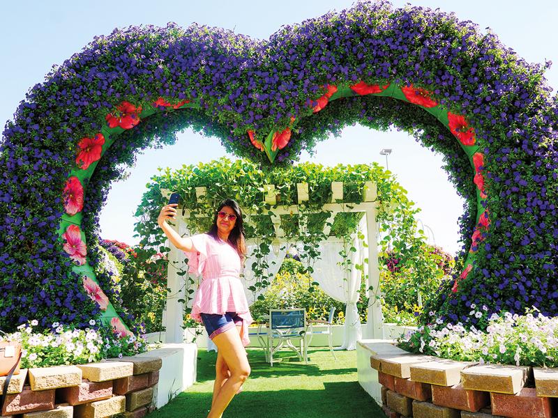Miracle Garden_6