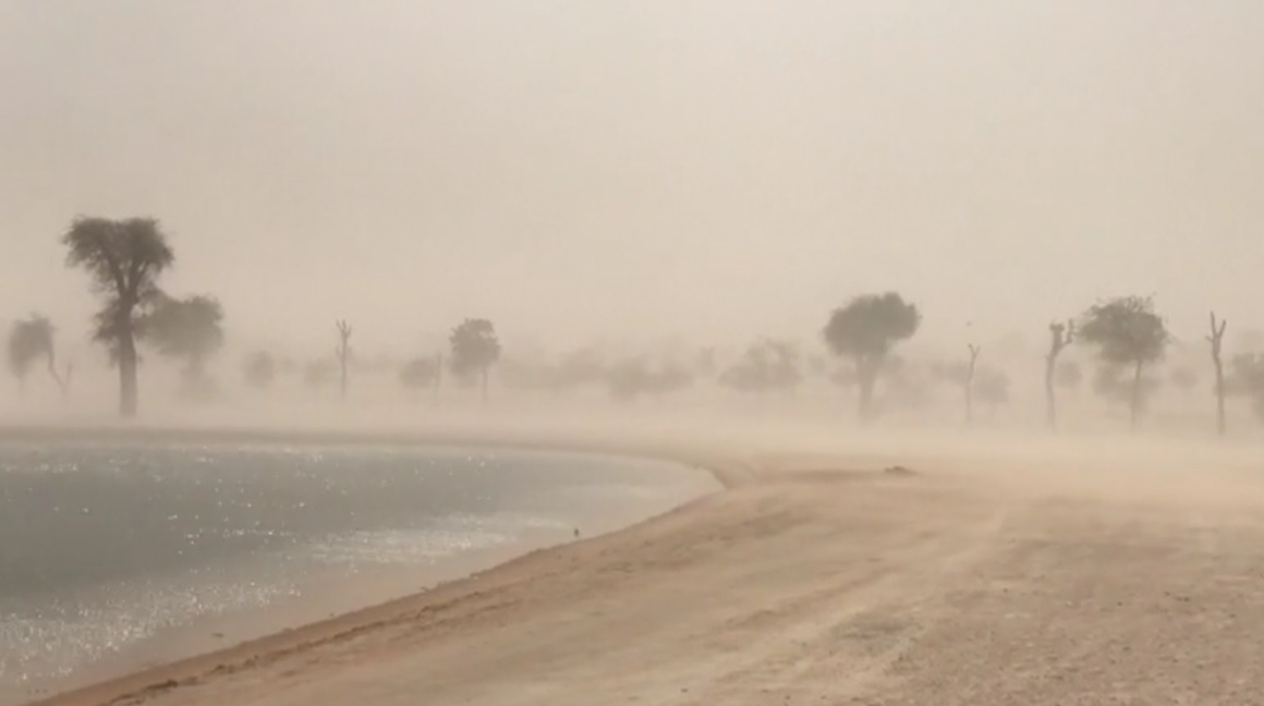 UAE weather: It is mostly sunny, partly cloudy, and foggy across the emirates