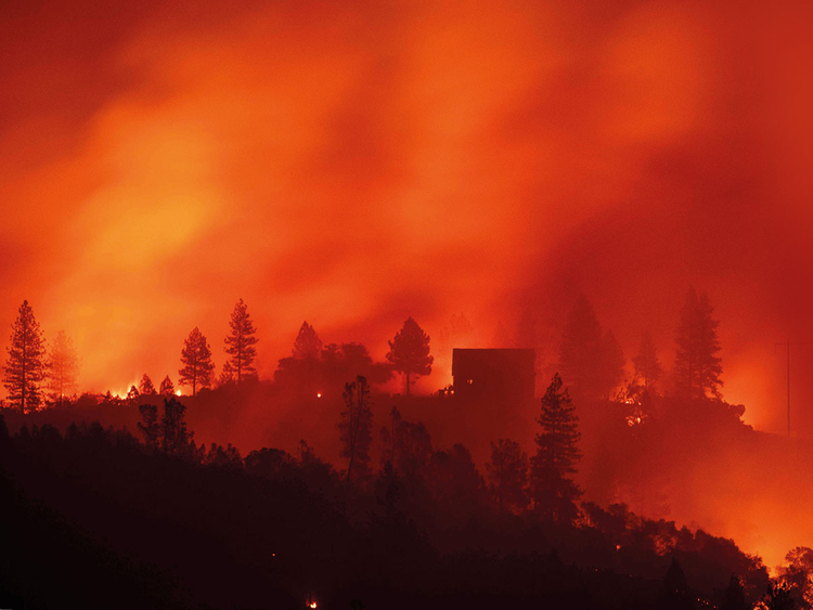 FTC-CALIF-WILDFIRE55-(Read-Only)