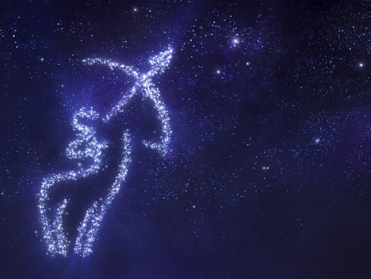 sunday november 22 horoscope