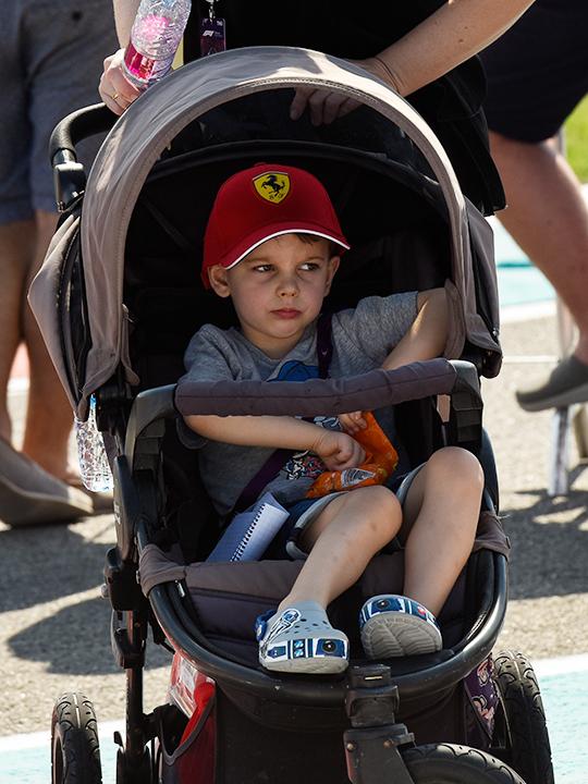 A young Formula 1 fan
