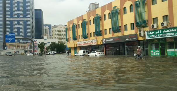 NAT RAIN_PIC1343