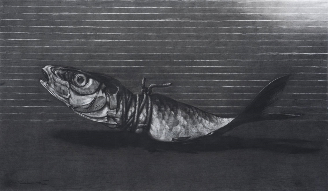 Fish by Youssef Abdelke - charcoal on paper
