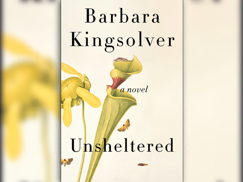 unsheltered-(Read-Only)