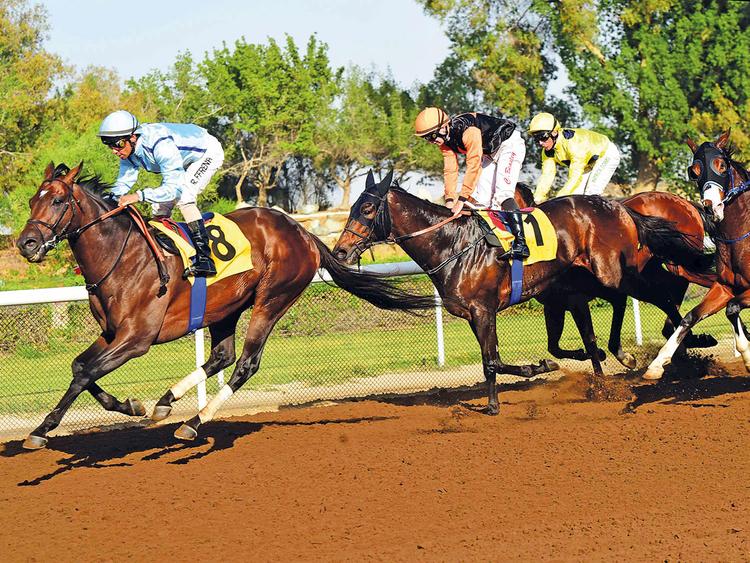SOP-181130-Jebel-Ali-race-2-(Read-Only)