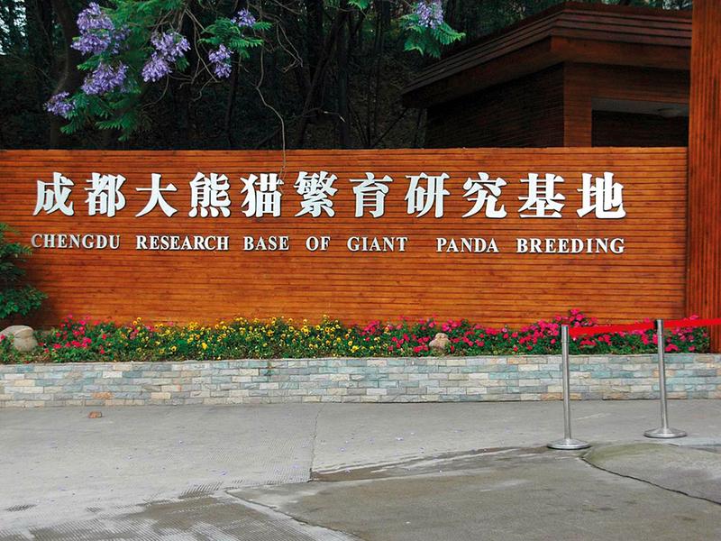 Chengdu-Research-Base-of-Giant-Panda-Breeding-1-(Read-Only)