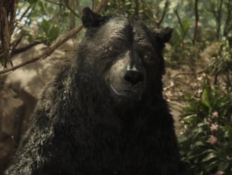Mowgli NEW4