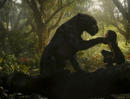 Mowgli NEW5