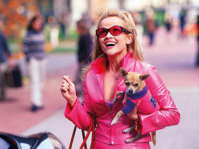 Legally-Blonde-with-Elle-Woods-with-her-dog-(Read-Only)