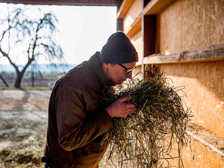 German farmer sues government 181208