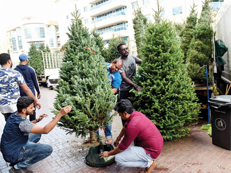 NAT_181216_CHRISTMAS-TREE_VS-16-(Read-Only)