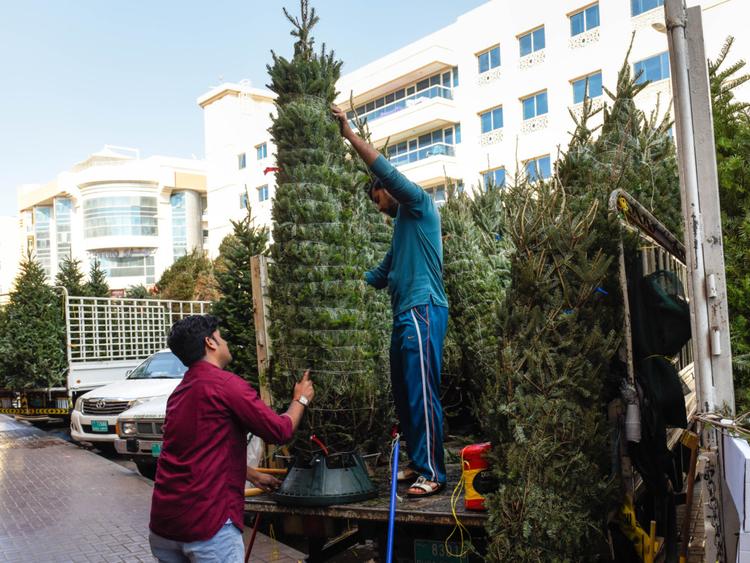 NAT_181216_CHRISTMAS TREE_VS-14