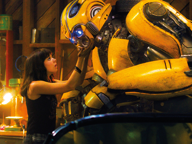 Bumblebee-lead-1-(Read-Only)