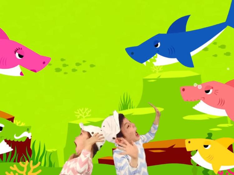 baby shark5