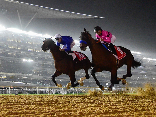 Dubai World Cup on top among five-star ranking events