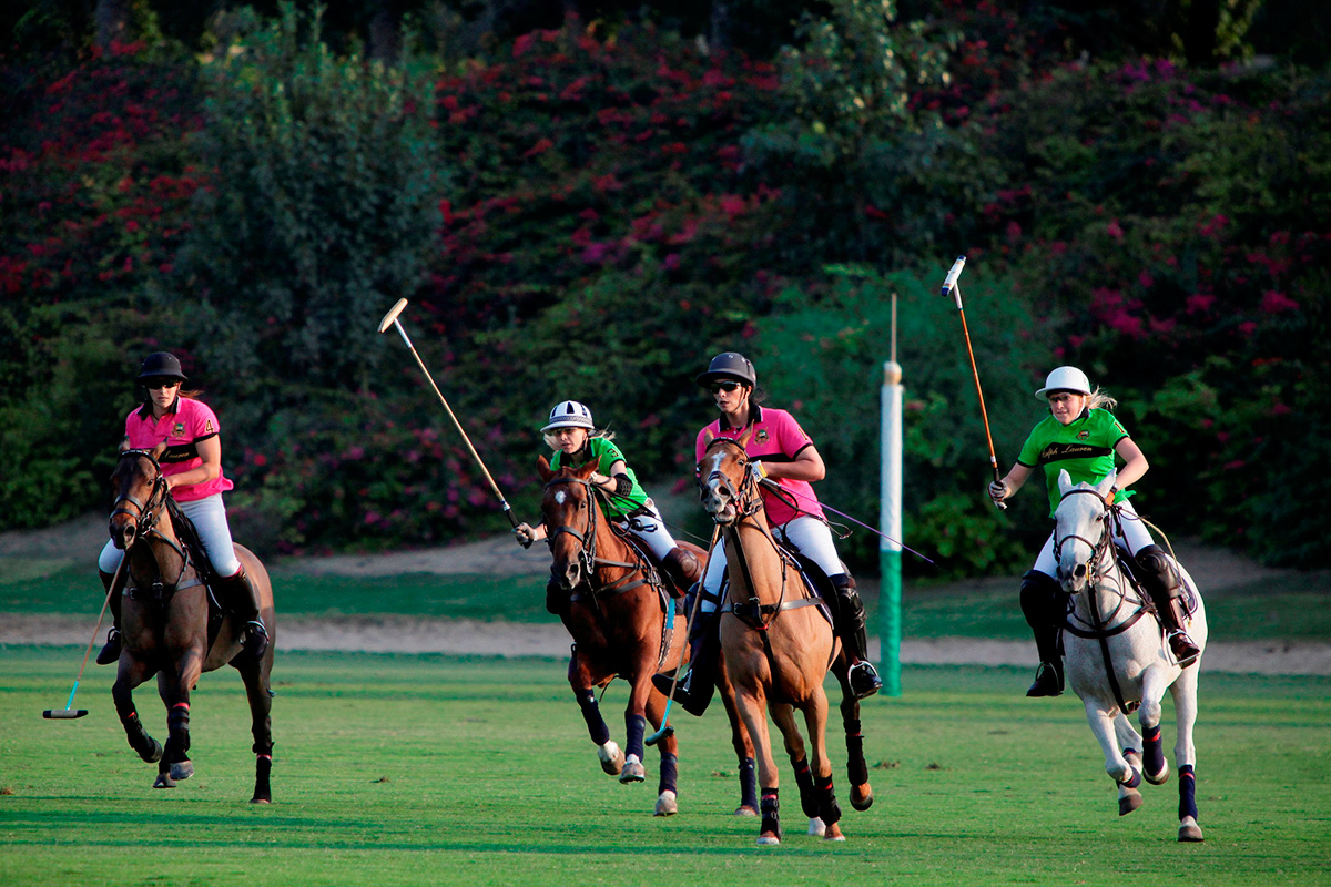 Polo in the UAE