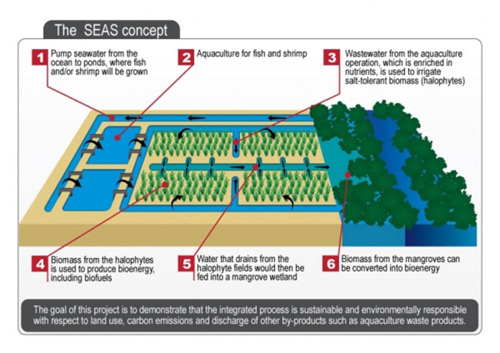 SEAS concept