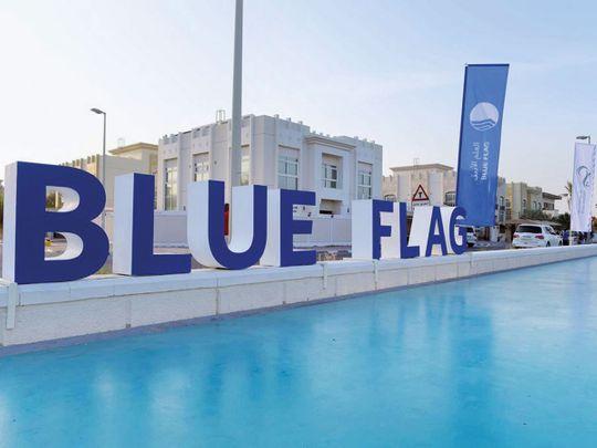 190123 blue flag program