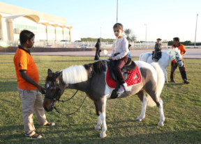 TAB-190124-WWW-Shj-showjumping-league-1548256162763
