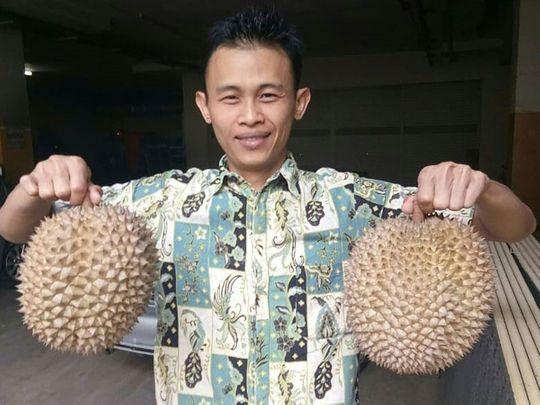 190130 durians