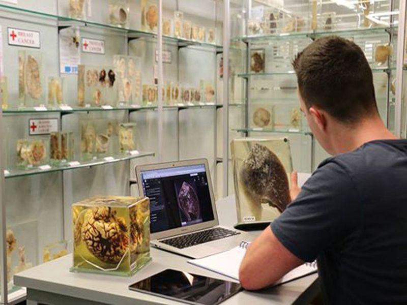 The Museum of Human Disease