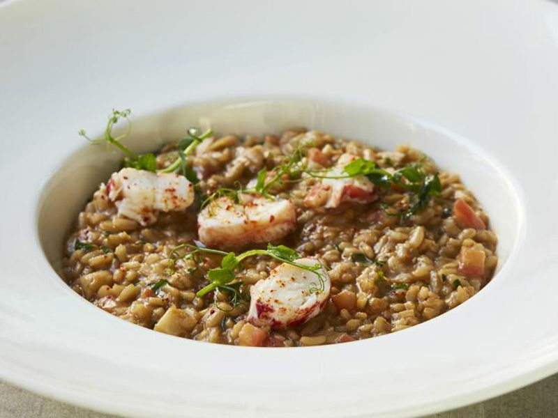 Rockfish Lobster Risotto