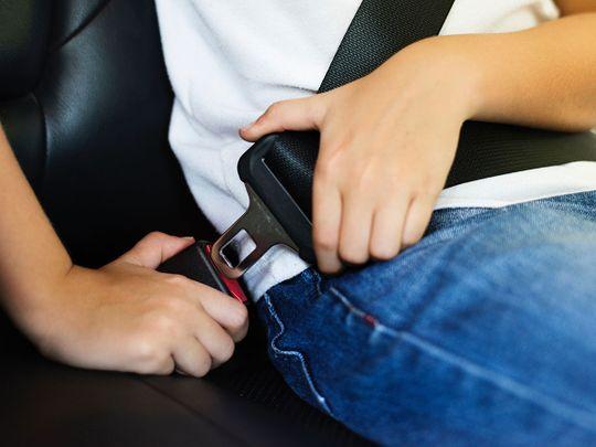 190209 seat belt generic