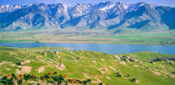 tab-Bukhara-iStock-462023997-1550062564374