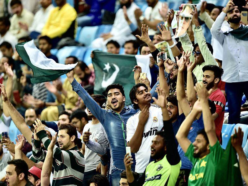 Cricket fans 5
