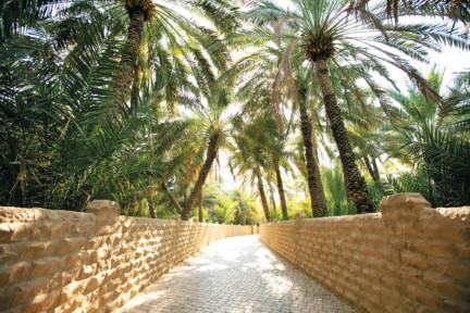 WWW-Al-Ain-1550210292110