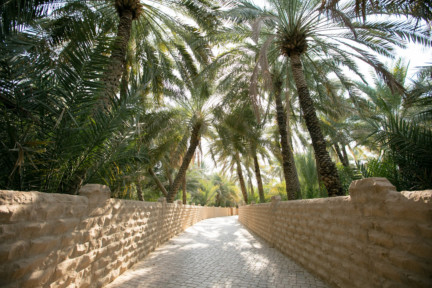 Al-Ain-Oasis-UNESCO-World-Heritge-SiteWWW-1550295317392