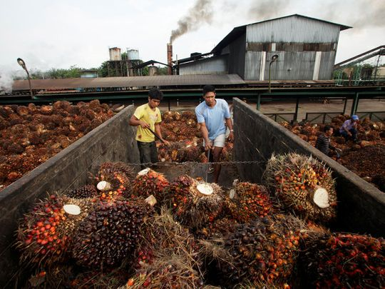 Copy-of-2019-01-31T083310Z_1245734856_RC17569FDB80_RTRMADP_3_INDONESIA-EU-PALMOIL-(Read-Only)
