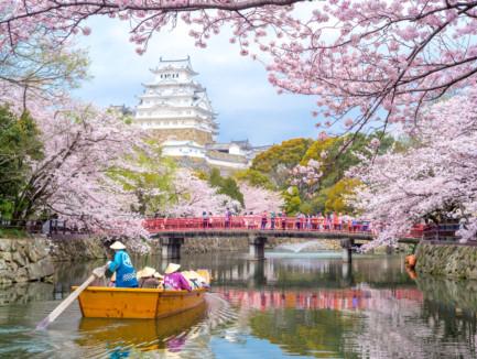 tab-Japan,-Kyoto-and-Tokyo-iStock-520176152-1551364348679