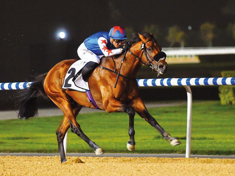 Mourad revels in winning feeling | Horse-racing – Gulf News