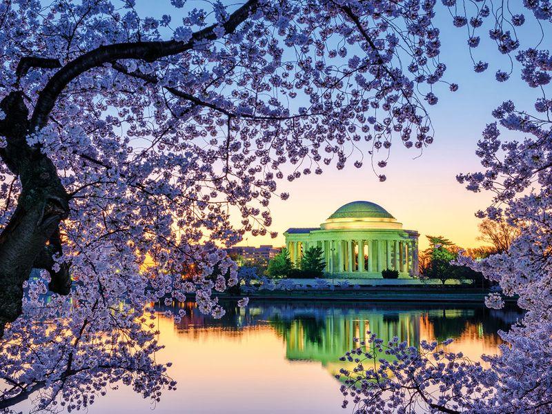 tab-Washington-D.C