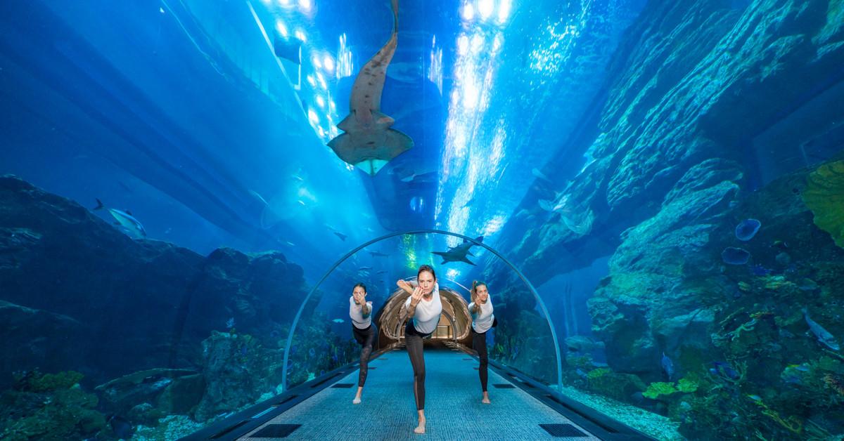 TAB-190310-WWW-N--Underwater-Yoga---Dubai-Aquarium---15-March-2019-1-1552136759106