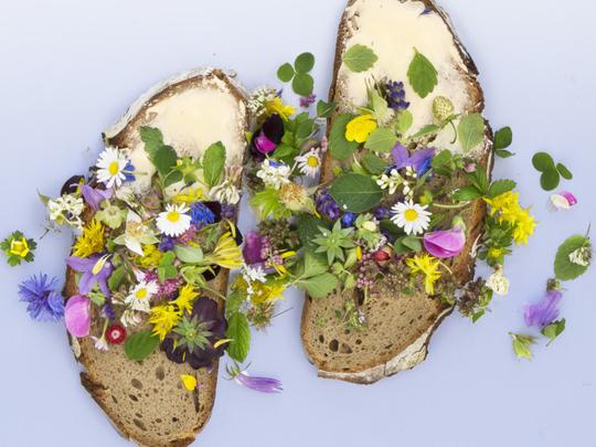 tab-Edible-flowers-iStock-959516772-1552817804871