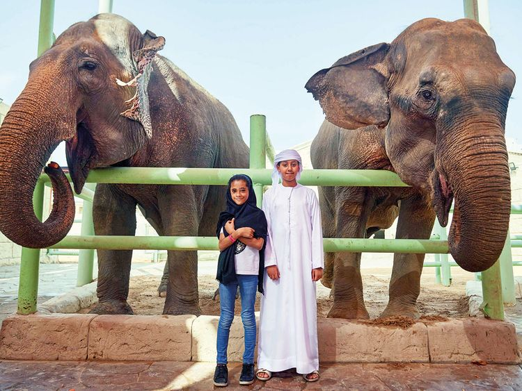 NAT-190319-EMIRATES-ZOO-(Read-Only)