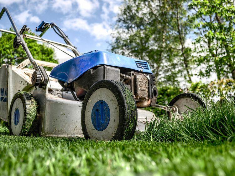 yardwork generic